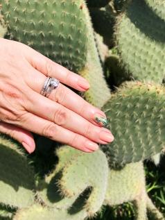 cactus mani cactus 1